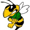 Mad As a Hornet Contest - Poem by Lu Loo Hornet Mascot Football