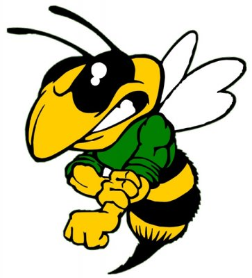 Mad Hornet Mascot