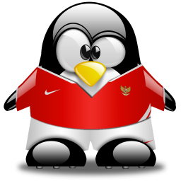 Penguin Football Mascot