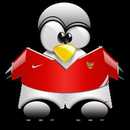 Penguin Football Mascot