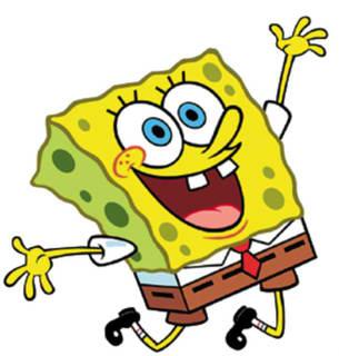 Sponge Cartoon Mascot