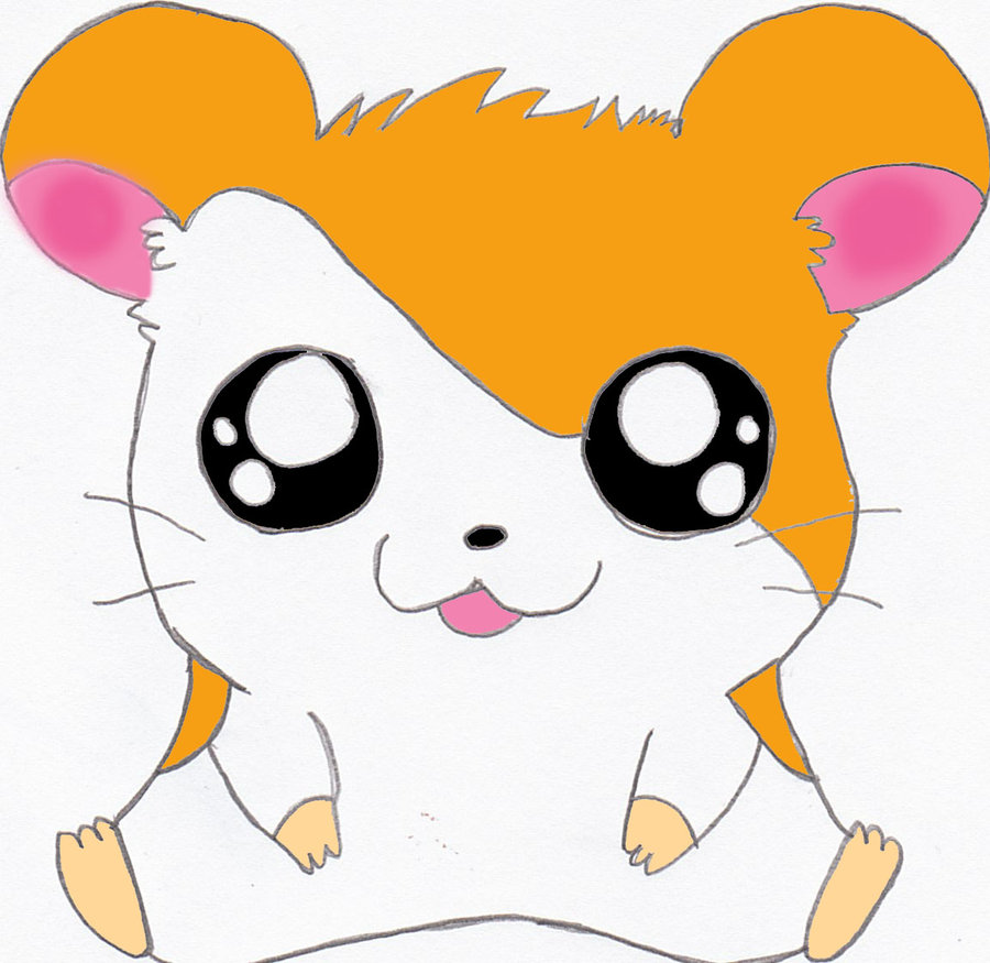 kawaii Cute Hamster Cartoon