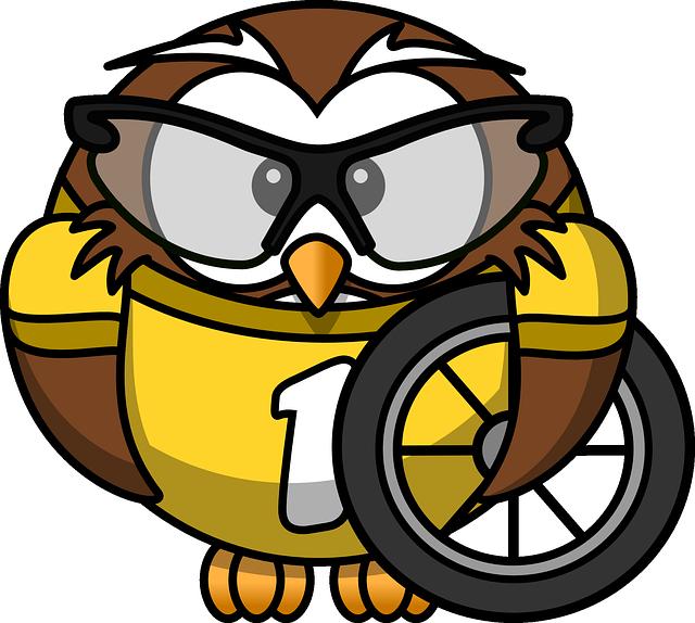 Cool Owl Mascot