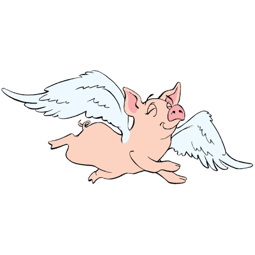 Flying Angel Pig Mascot