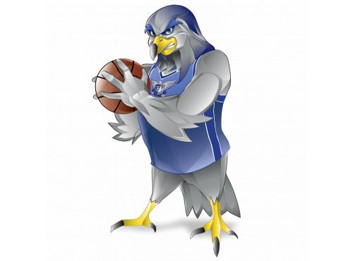 Basketball Hawks Mascot